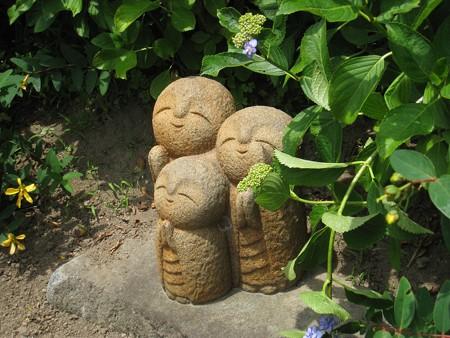 長谷寺のアジサイの径 10 良縁地蔵が見上げてました
