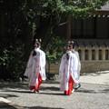 写真: 熱田神宮06 斎館に向かう神主と巫女