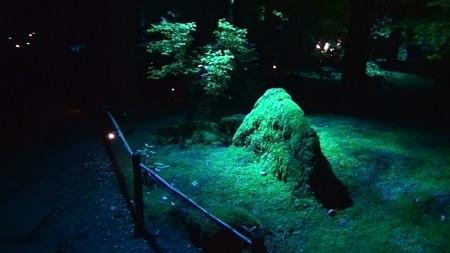 円通院13:瞑想の庭