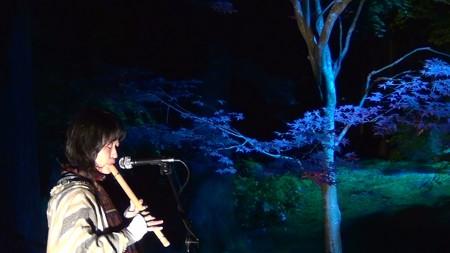 円通院15:ソニードデルビエントの演奏2
