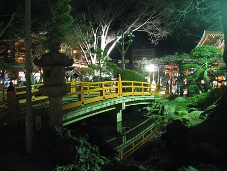 千葉神社 夜6 妙見池 20110103