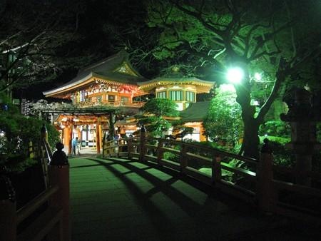 千葉神社 夜9  ねがい橋2 20110103