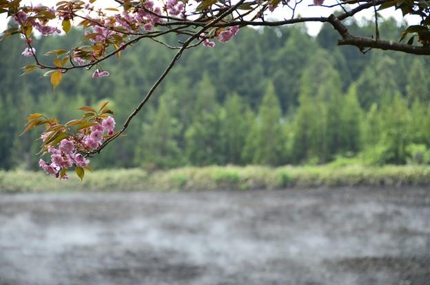 Photos: 2013-05-30