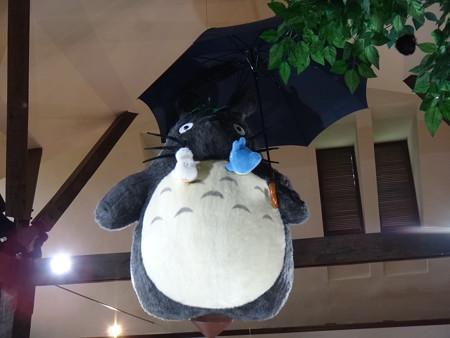 天井にトトロ&ススワタリ