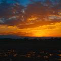 秋の夕焼け@桶川