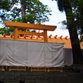 写真: 新神殿2