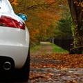 写真: 短い秋のドライブ