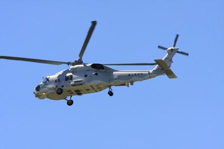 2012.08.23 大和 泉の森 海上自衛隊 SH-60J 8265