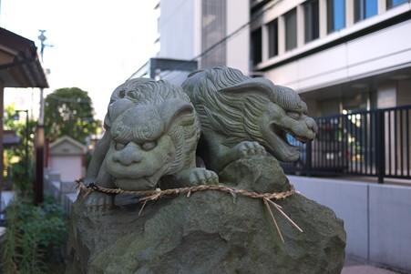 2012.08.25 三田 神社の狛犬