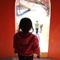 Photos: 2012.11.22 新潟 公園 姫の挑戦