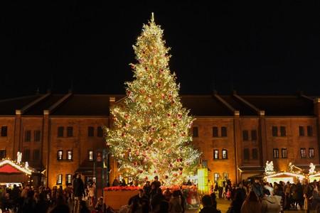 2012.12.09 みなとみらい クリスマスマーケット in 横浜赤レンガ倉庫 ツリー