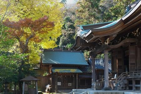 2012.12.13 鎌倉 御霊神社
