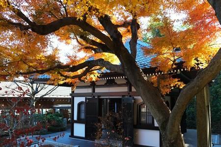 2012.12.13 鎌倉 長谷寺 経蔵