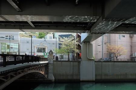 2013.04.05 元町 谷戸橋 シドモア桜