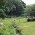 Photos: 2013.06.06 和泉川 散歩道