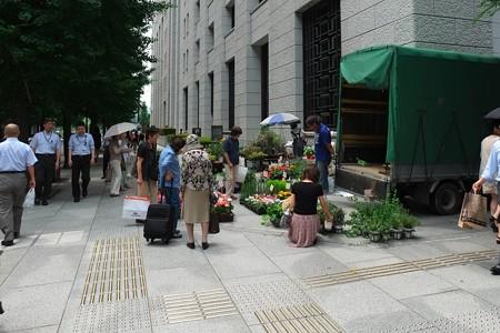2013.06.18 丸の内仲通り 花屋 移動販売