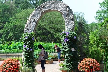 2013.07.10 大船植物園 肩車の門