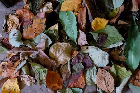 2013.10.24 ベーリック・ホール ハロウィン装飾 暖炉