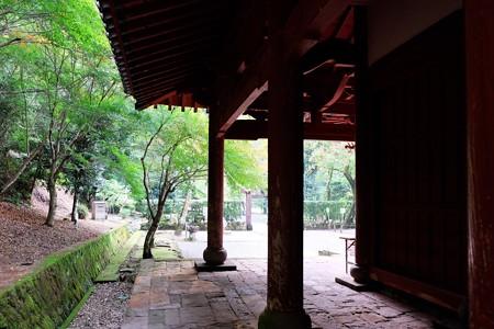 2013.11.04 佐賀 多久聖廟 秋