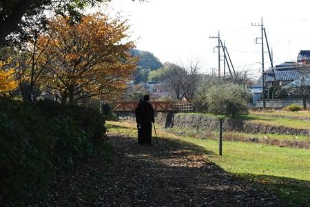 2013.12.06 和泉川 橘始黄ころ