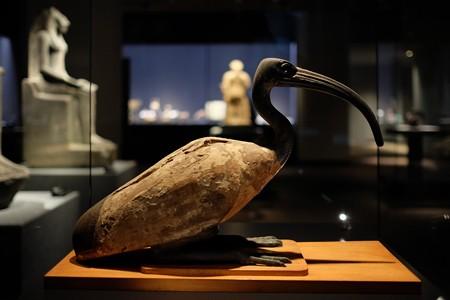2014.02.07 東京国立博物館 鴇像 エジプト TJ-4832