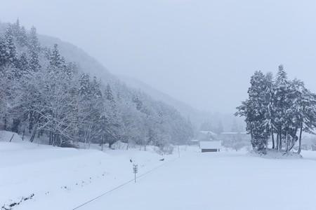 2014.03.21 信州 飯山線は雪の中