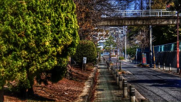 My jogging road.