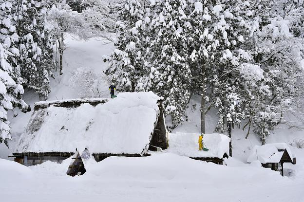 五箇山的冬雪