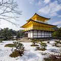 写真: 金閣寺冬雪