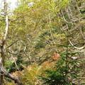 20120930 硫黄岳 11:07
