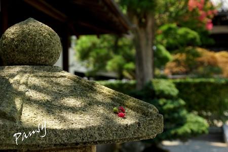 花をのせた石灯籠・・