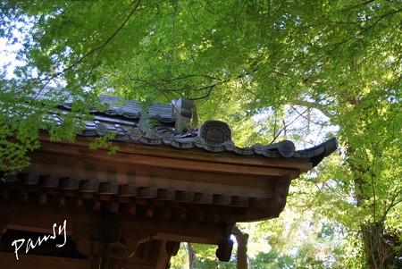 鎌倉 006