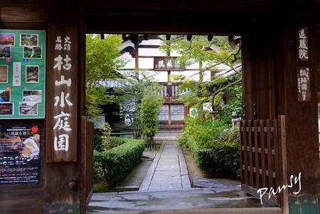 妙心寺 退蔵院 25