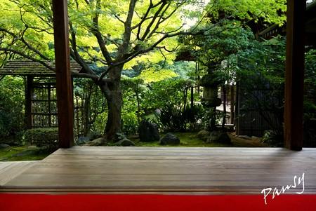 侘の庭・・妙心寺 桂春院 4