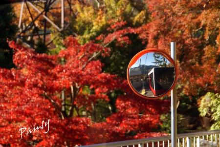 箱根の紅葉 006