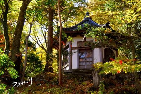 箱根の紅葉 041