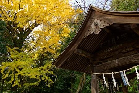 報徳二宮神社 7