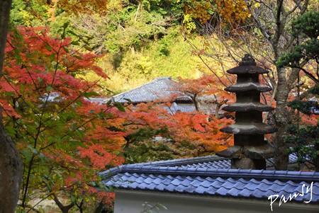 石塔と・・紅葉と・・