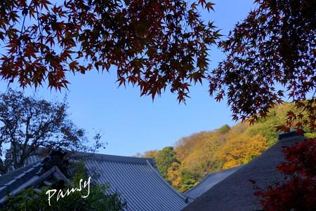 北鎌倉 093