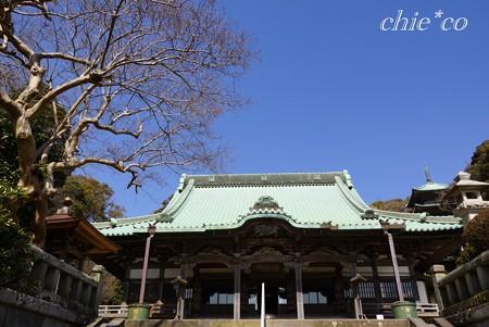 青空にそびえる大本堂・・龍口寺