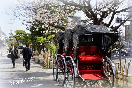桜彩の鎌倉 002