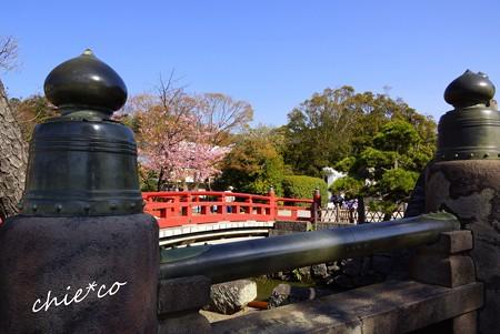 桜彩の鎌倉 018