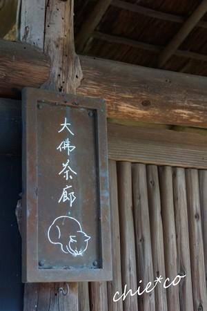 桜彩の鎌倉 064