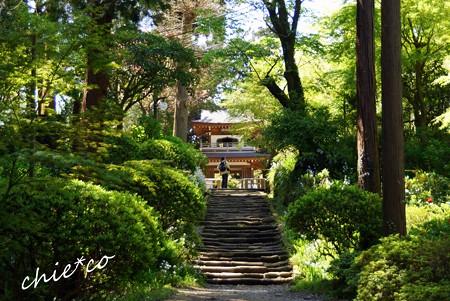 北鎌倉 029