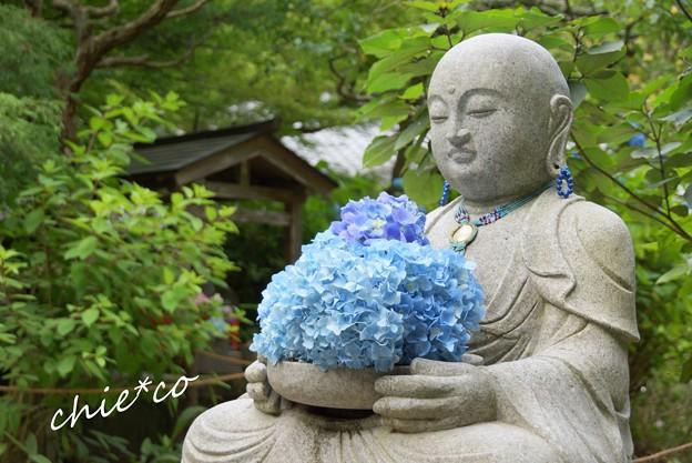 紫陽花を抱く・・花想い地蔵さま・・