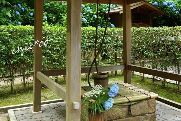 北鎌倉~水無月 038