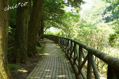 箱根・十国峠 211