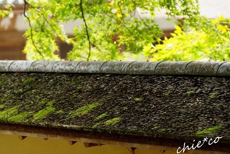 北鎌倉 164
