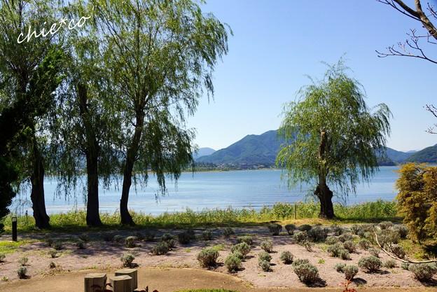 山中湖 河口湖 192