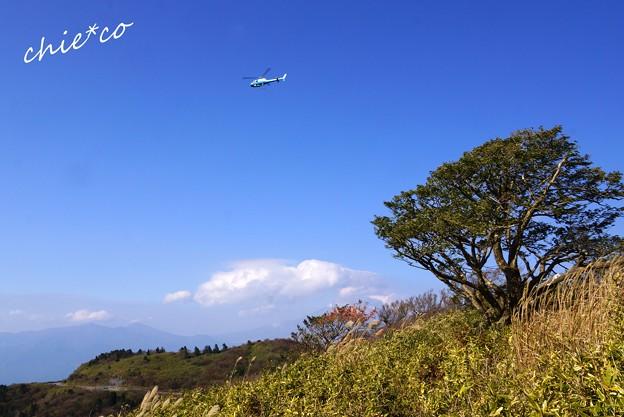 芦ノ湖スカイライン-055